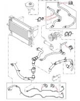 2.2 & 2.4 Puma Radiator Hoses, Thermostat & Expansion Tank